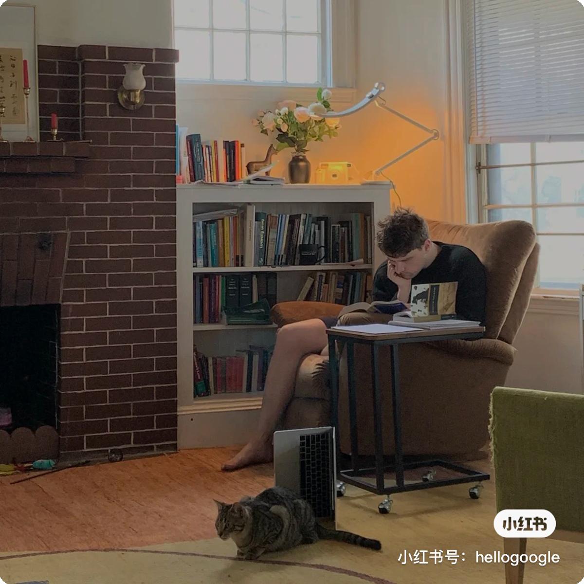 小猫咪夜以继日守护着读书的爸爸
